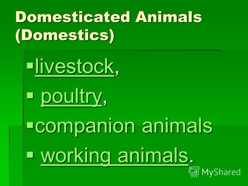 Domesticated Animals (Domestics) livestock, livestock, livestock poultry, poultry, poultry companion animals companion animals working animals. working animals.working animals