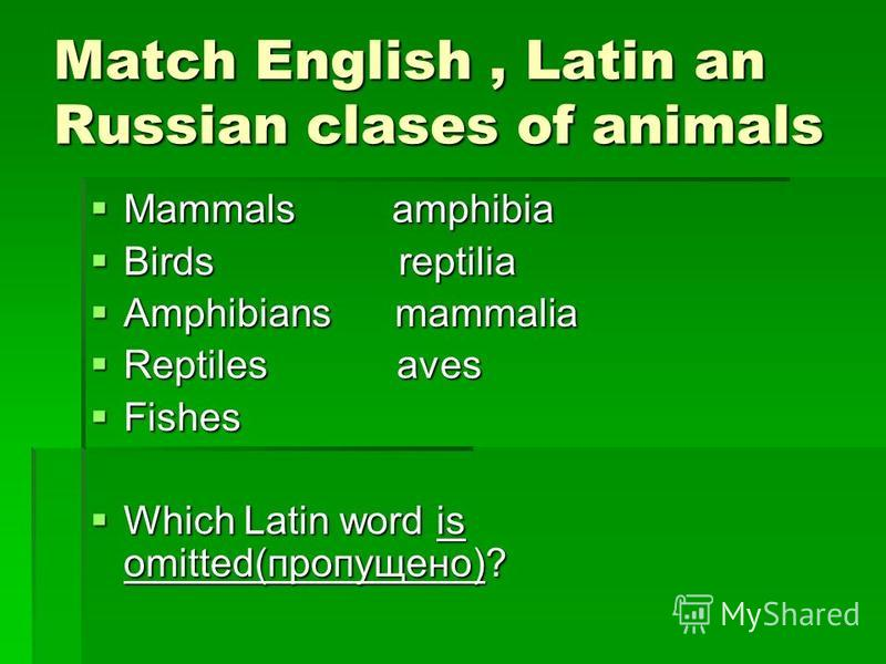 Match English, Latin an Russian clases of animals Mammals amphibia Mammals amphibia Birds reptilia Birds reptilia Amphibians mammalia Amphibians mammalia Reptiles aves Reptiles aves Fishes Fishes Which Latin word is omitted(пропущено)? Which Latin wo