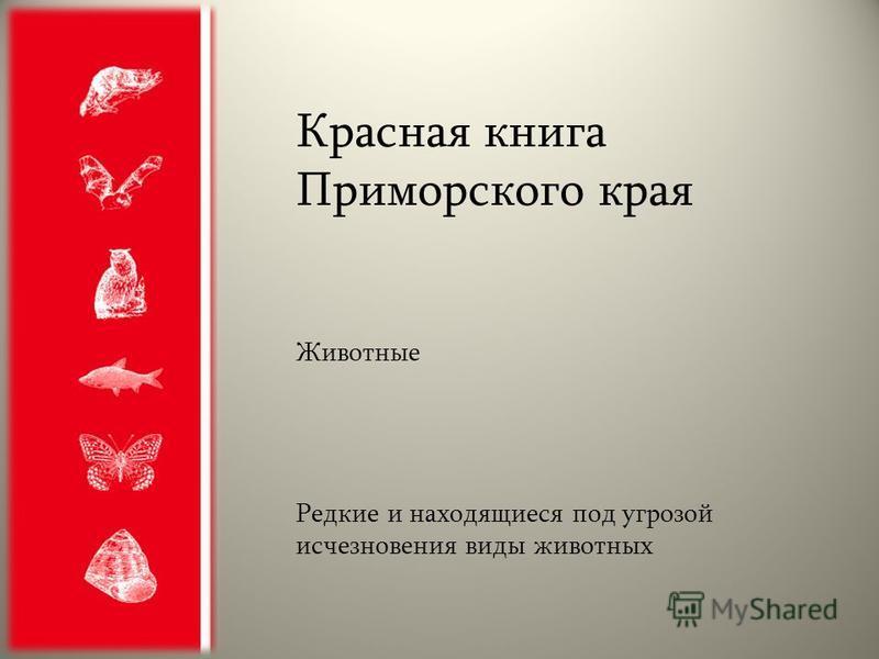Красная книга Приморского края Животные Редкие и находящиеся под угрозой исчезновения виды животных