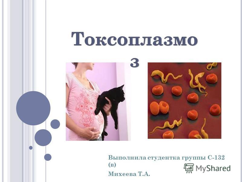 Выполнила студентка группы С-132 (в) Михеева Т.А.