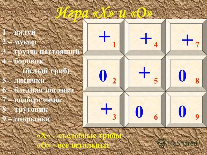 Игра «Х» и «О» «Х» – съедобные грибы «О» - все остальные 1 – валуй 2 – мукор 3 – груздь настоящий 4 – боровик (белый гриб) 5 – лисички 6 – бледная поганка 7 – подберезовик 8 – трутовик 9 – спорынья 14 3 5 69 8 7 2 + + + + + 0 0 0 0