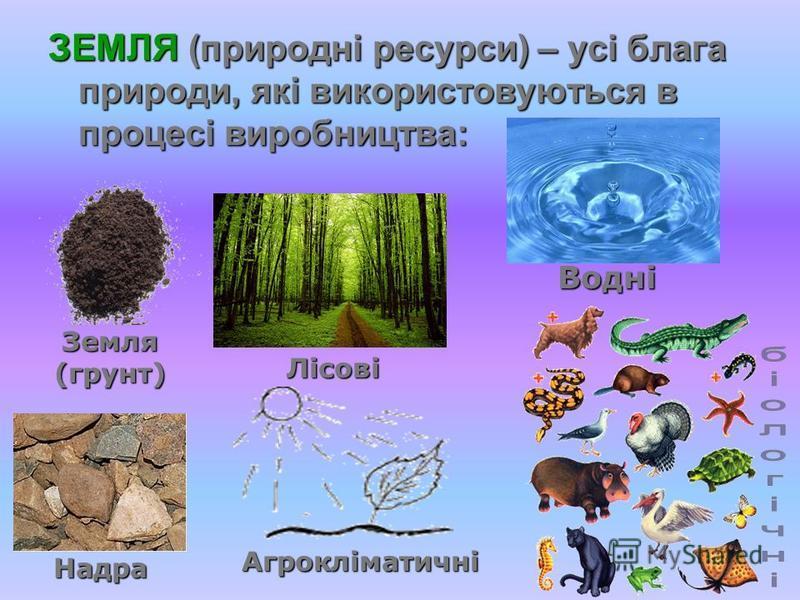 ЗЕМЛЯ (природні ресурси) – усі блага природи, які використовуються в процесі виробництва: Земля (грунт) Надра Водні Лісові Агрокліматичні