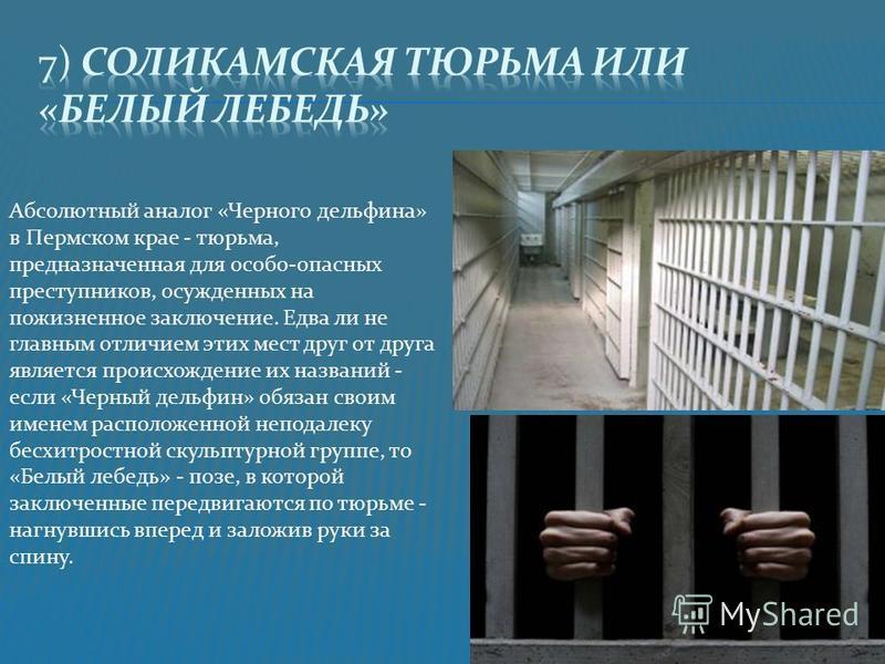 Абсолютный аналог «Черного дельфина» в Пермском крае - тюрьма, предназначенная для особо-опасных преступников, осужденных на пожизненное заключение. Едва ли не главным отличием этих мест друг от друга является происхождение их названий - если «Черный