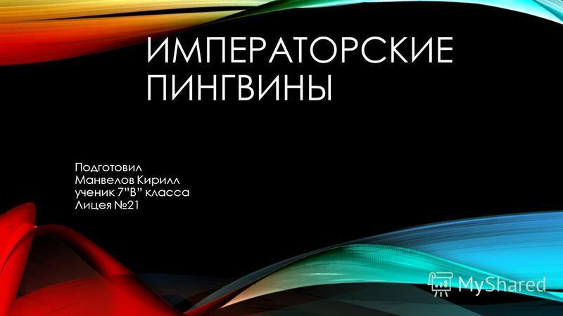 ИМПЕРАТОРСКИЕ ПИНГВИНЫ Подготовил Манвелов Кирилл ученик 7В класса Лицея 21