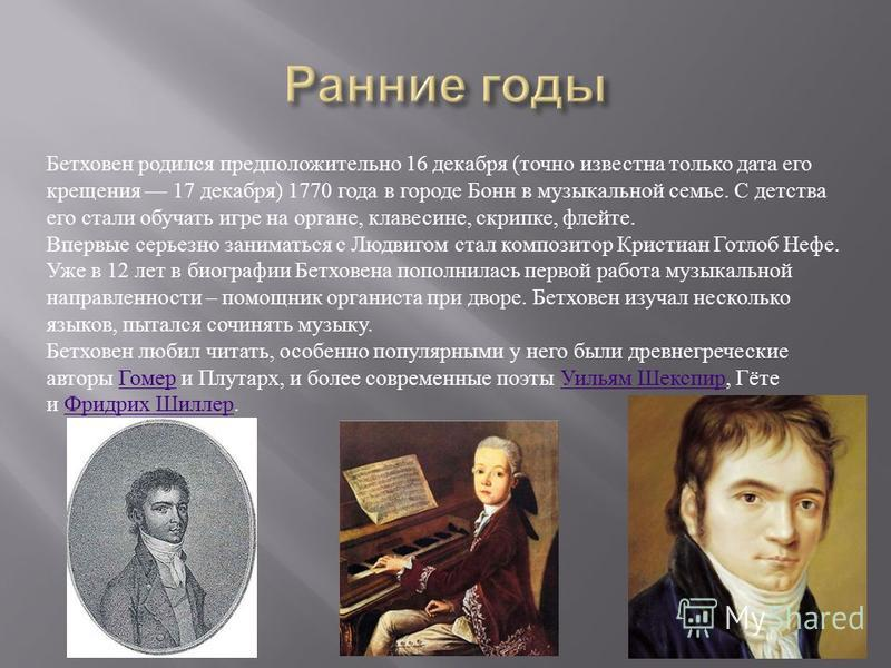 life of beethoven essays This is not an example of the work written by our professional essay writers   during the life of beethoven's ninth symphony for many remains.