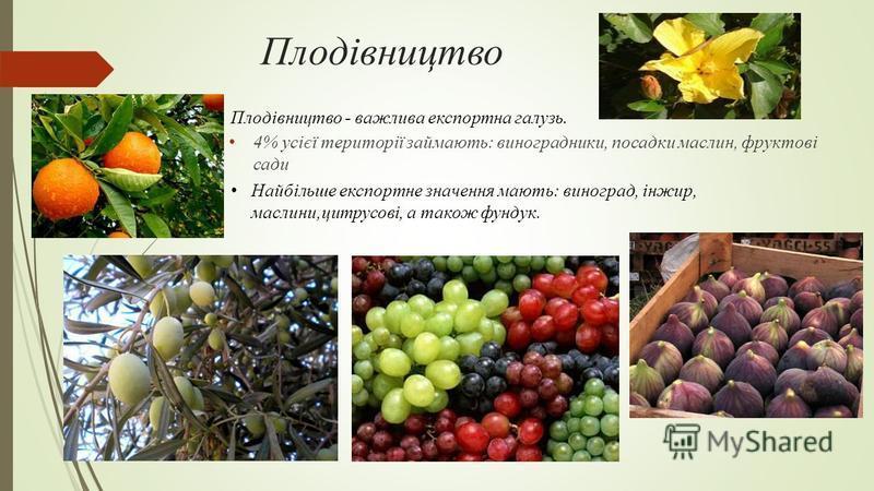 Плодівництво 4% усієї території займають: виноградники, посадки маслин, фруктові сади Найбільше експортне значення мають: виноград, інжир, маслини,цитрусові, а також фундук. Плодівництво - важлива експортна галузь.