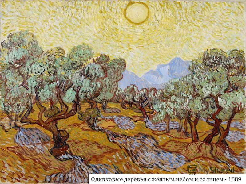 Оливковые деревья с жёлтым небом и солнцем - 1889