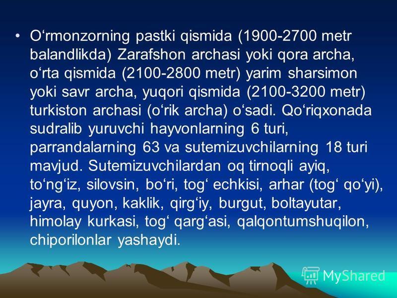 Ormonzorning pastki qismida (1900-2700 metr balandlikda) Zarafshon archasi yoki qora archa, orta qismida (2100-2800 metr) yarim sharsimon yoki savr archa, yuqori qismida (2100-3200 metr) turkiston archasi (orik archa) osadi. Qoriqxonada sudralib yuru