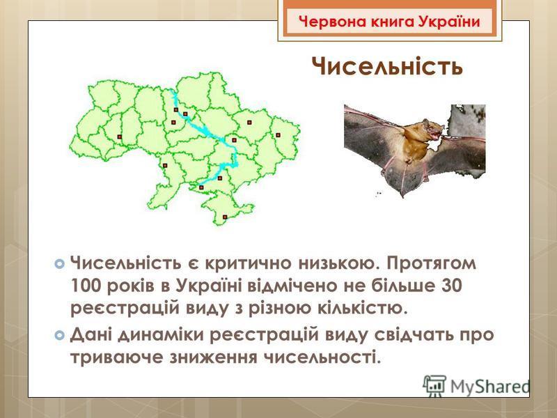 Чисельність Чисельність є критично низькою. Протягом 100 років в Україні відмічено не більше 30 реєстрацій виду з різною кількістю. Дані динаміки реєстрацій виду свідчать про триваюче зниження чисельності. Червона книга України