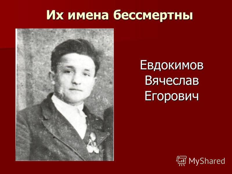 Евдокимов Вячеслав Егорович Их имена бессмертны