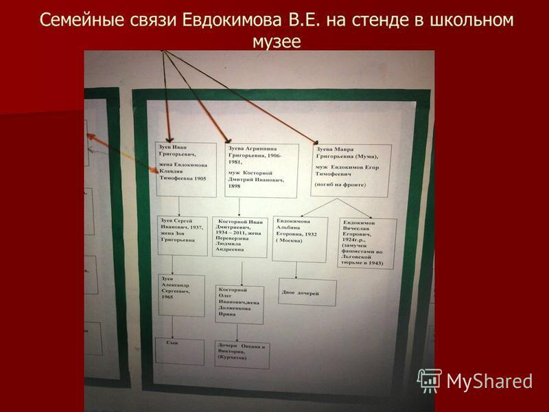 Семейные связи Евдокимова В.Е. на стенде в школьном музее
