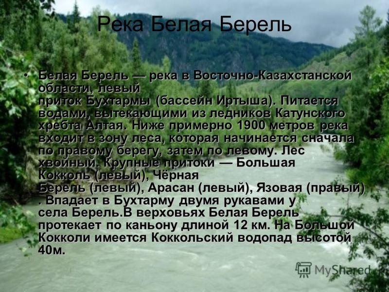 Река Белая Берель Белая Берель река в Восточно-Казахстанской области, левый приток Бухтармы (бассейн Иртыша). Питается водами, вытекающими из ледников Катунского хребта Алтая. Ниже примерно 1900 метров река входит в зону леса, которая начинается снач