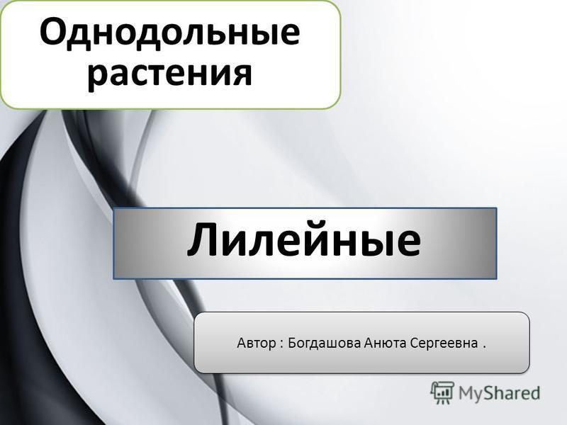 Однодольные растения Лилейные Автор : Богдашова Анюта Сергеевна.