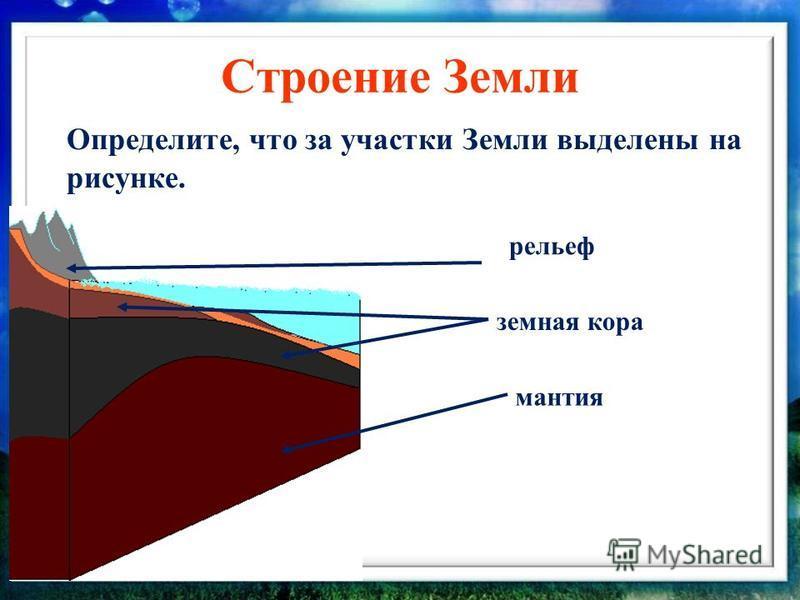 Строение Земли Определите, что за участки Земли выделены на рисунке. мантия земная кора рельеф