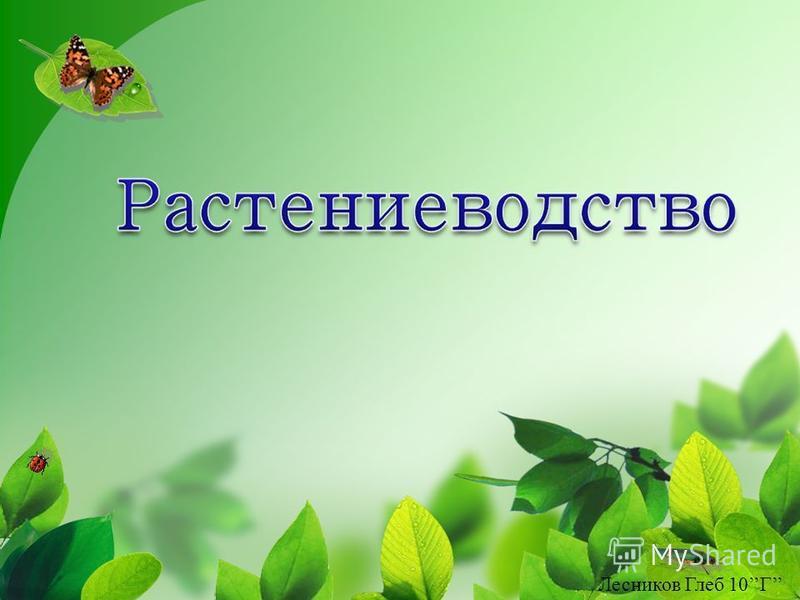 Лесников Глеб 10Г