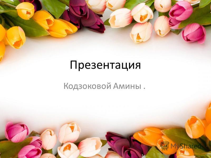 Презентация Кодзоковой Амины.