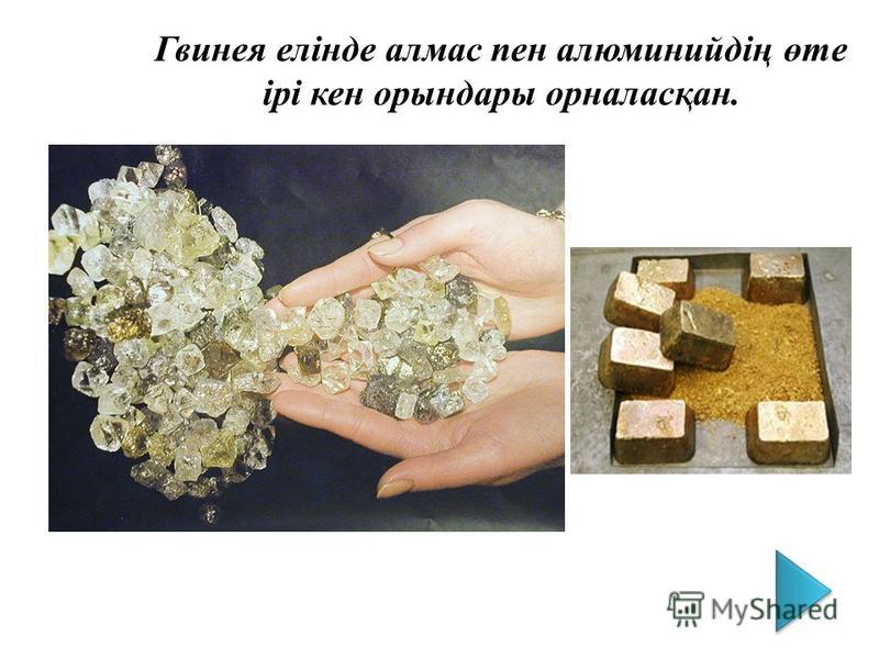 Гвинея елінде алмас пен алюминийдің өте ірі кен орындары орналасқан.