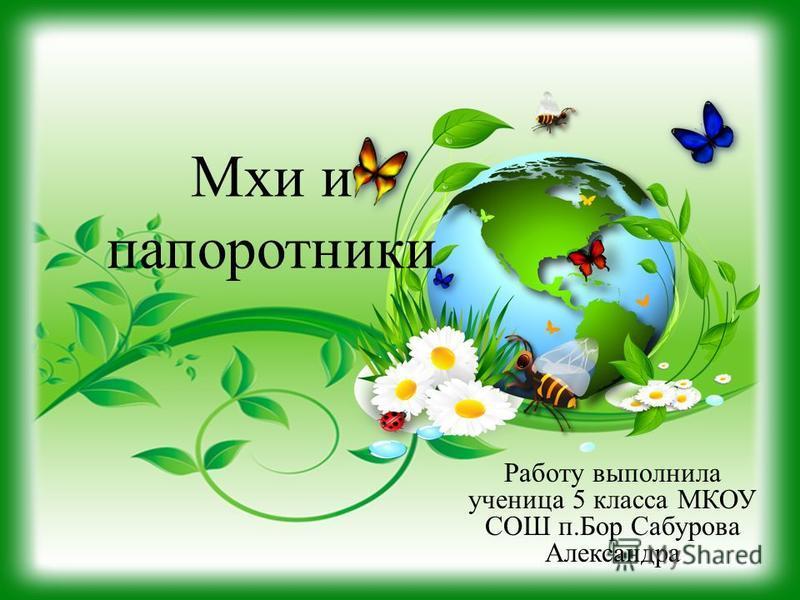 Мхи и папоротники Работу выполнила ученица 5 класса МКОУ СОШ п.Бор Сабурова Александра