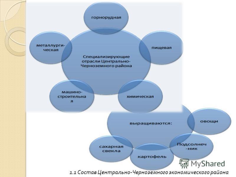 1.1 Состав Центрально - Черноземного экономического района