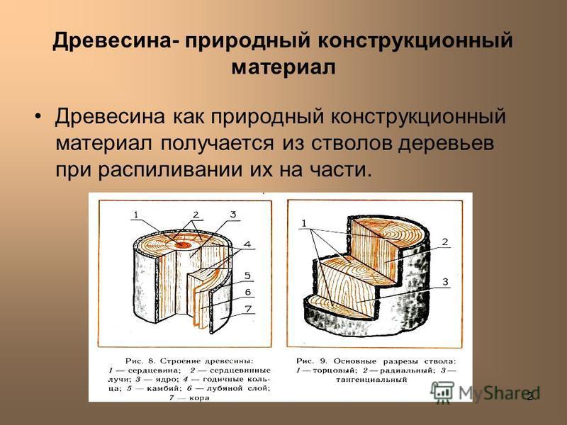 2 Древесина- природный конструкционный материал Древесина как природный конструкционный материал получается из стволов деревьев при распиливании их на части.