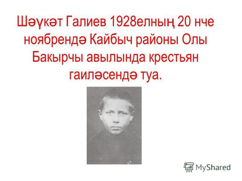 Ш әү к ә т Галиев 1928 челны ң 20 нче ноябренд ә Кайбыч районы Олы Бпакырчы авылында крестьян гаил ә сенд ә тула.