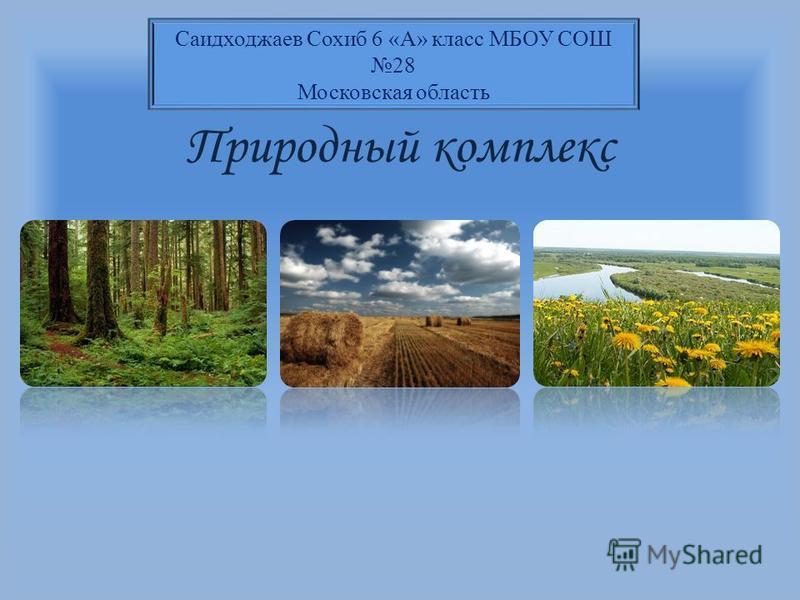 Природный комплекс Саидходжаев Сохиб 6 «А» класс МБОУ СОШ 28 Московская область