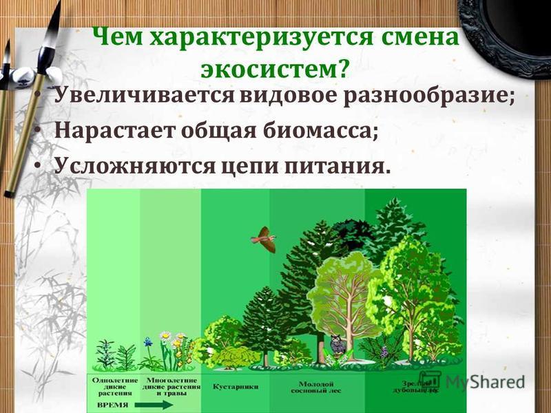 Чем характеризуется смена экосистем? Увеличивается видовое разнообразие; Нарастает общая биомасса; Усложняются цепи питания.