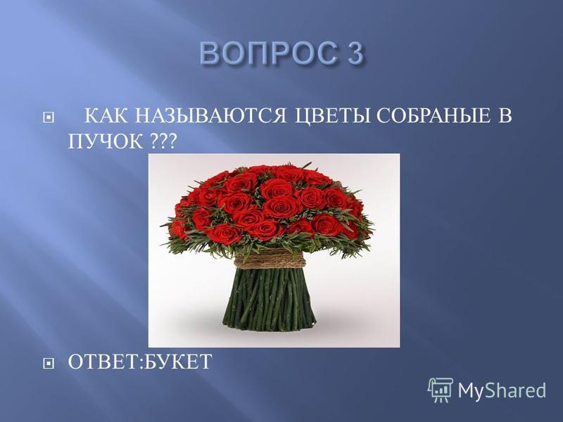 8 марта викторина на тему цветы доставка цветов рига