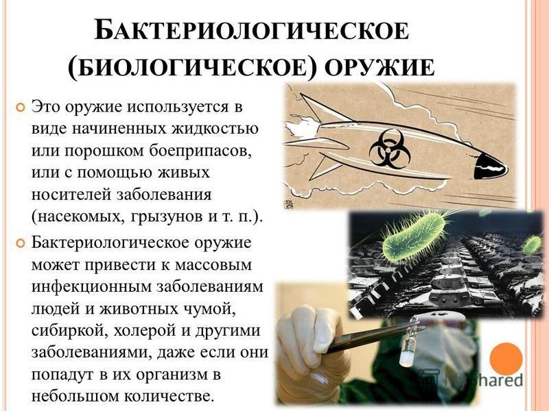 Б АКТЕРИОЛОГИЧЕСКОЕ ( БИОЛОГИЧЕСКОЕ ) ОРУЖИЕ Это оружие используется в виде начиненных жидкостью или порошком боеприпасов, или с помощью живых носителей заболевания (насекомых, грызунов и т. п.). Бактериологическое оружие может привести к массовым ин