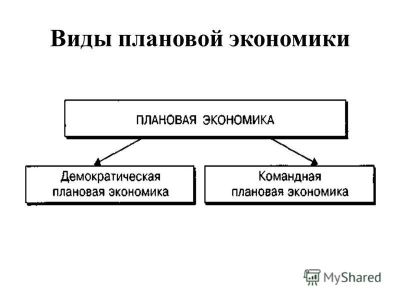 Виды плановой экономики