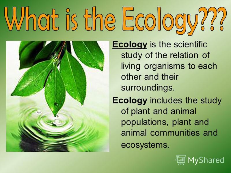 Ecology is the scientific study of the relation of living organisms to each other and their surroundings. Ecology includes the study of plant and animal populations, plant and animal communities and ecosystems.