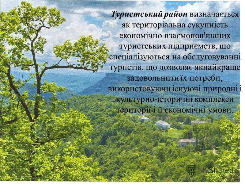 Туристський район визначається як територіальна сукупність економічно взаємопов'язаних туристських підприємств, що спеціалізуються на обслуговуванні туристів, що дозволяє якнайкраще задовольнити їх потреби, використовуючи існуючі природні і культурно