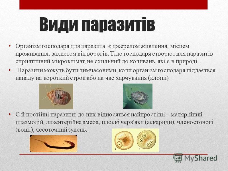 Паразити Широке поширення набув паразитизм. Багато видів паразитичних найпростіших викликають важкі форми захворювань людини, домашніх і промислових тварин, а також рослин. Паразитизм - це форма міжвидових взаємовідносин двох організмів, при яких орг
