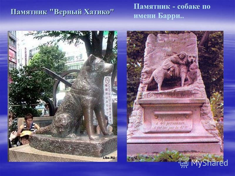 Памятник - собаке по имени Барри.. Памятник Верный Хатико