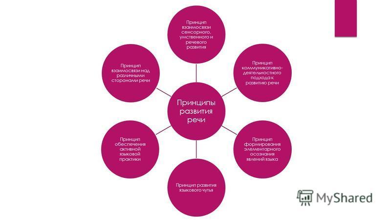 Принципы развития речи Принцип взаимосвязи сенсорного, умственного и речевого развития Принцип коммуникативно- деятельностного подхода к развитию речи Принцип формирования элементарного осознания явлений языка Принцип развития языкового чутья Принцип