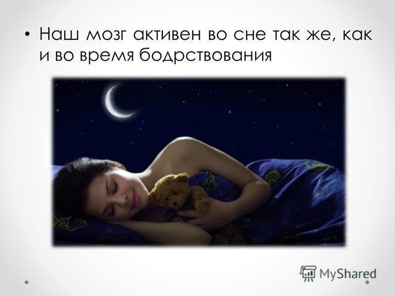 Наш мозг активен во сне так же, как и во время бодрствования