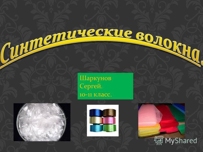 Шаркунов Сергей. 10-11 класс.