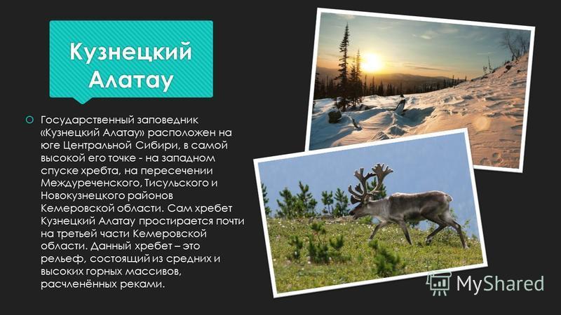 Кузнецкий Алатау Государственный заповедник «Кузнецкий Алатау» расположен на юге Центральной Сибири, в самой высокой его точке - на западном спуске хребта, на пересечении Междуреченского, Тисульского и Новокузнецкого районов Кемеровской области. Сам