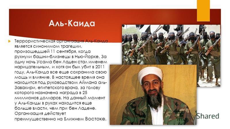 Аль-Каида Террористическая организация Аль-Каида является синонимом трагедии, произошедшей 11 сентября, когда рухнули башни-близнецы в Нью-Йорке. За одну ночь Усама бен Ладен стал именем нарицательным, и хотя он был убит в 2011 году, Аль-Каида все ещ