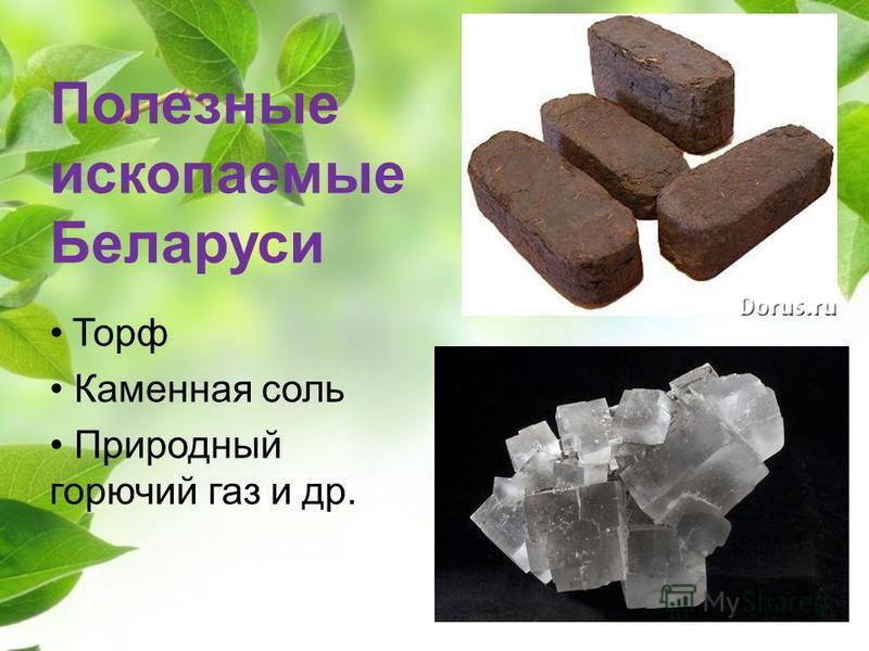 Полезные ископаемые Беларуси Торф Каменная соль Природный горючий газ и др.