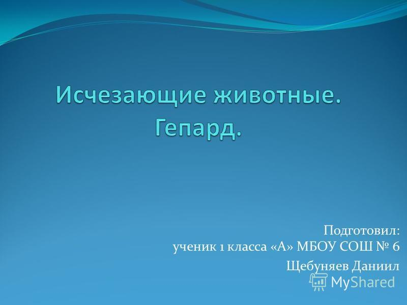 Подготовил: ученик 1 класса «А» МБОУ СОШ 6 Щебуняев Даниил