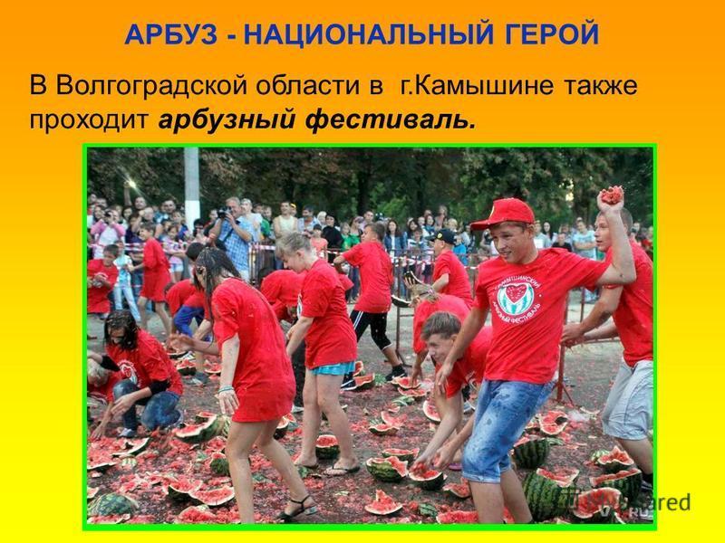 АРБУЗ - НАЦИОНАЛЬНЫЙ ГЕРОЙ В Волгоградской области в г.Камышине также проходит арбузный фестиваль.