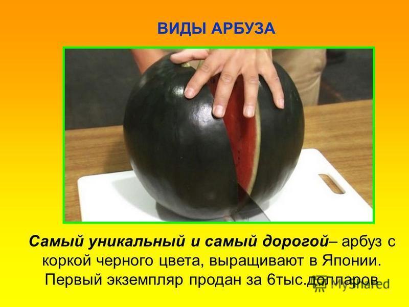ВИДЫ АРБУЗА Самый уникальный и самый дорогой– арбуз с коркой черного цвета, выращивают в Японии. Первый экземпляр продан за 6 тыс.долларов