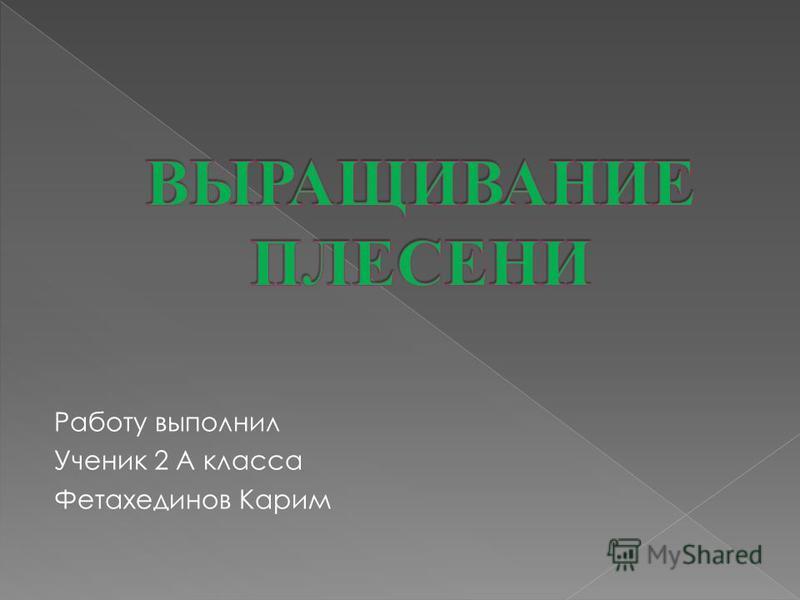 Работу выполнил Ученик 2 А класса Фетахединов Карим