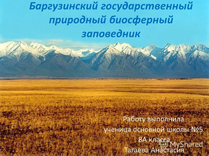 Баргузинский государственный природный биосферный заповедник Работу выполнила ученица основной школы 5 8А класса Тагаева Анастасия