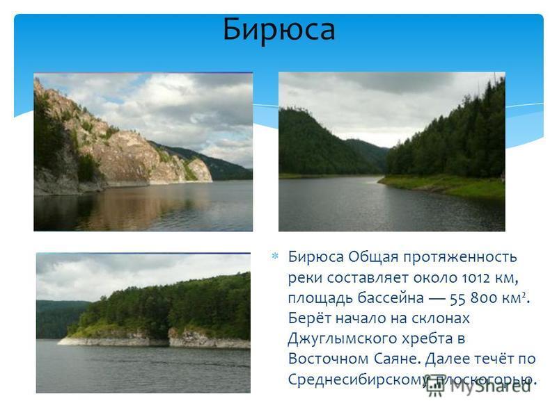 Бирюса Общая протяженность реки составляет около 1012 км, площадь бассейна 55 800 км². Берёт начало на склонах Джуглымского хребта в Восточном Саяне. Далее течёт по Среднесибирскому плоскогорью. Бирюса