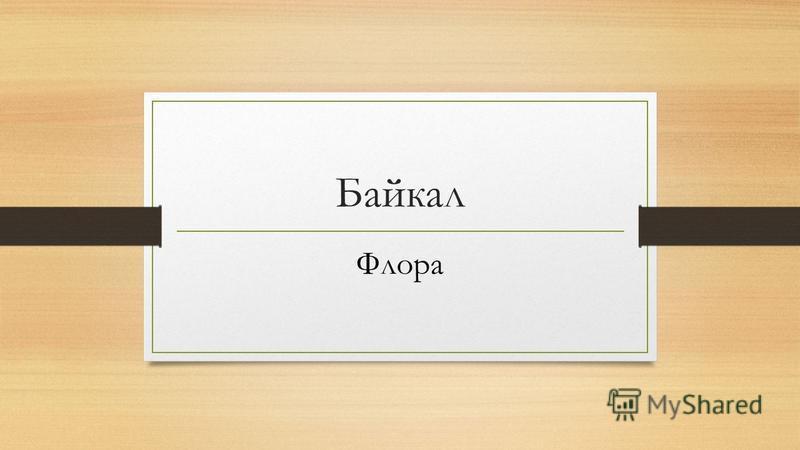 Байкал Флора