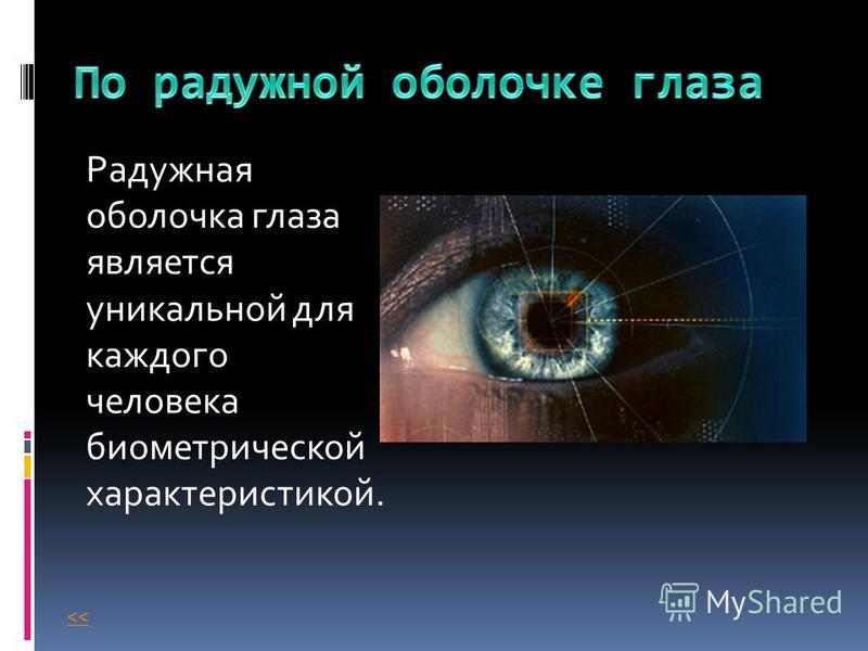 Радужная оболочка глаза является уникальной для каждого человека биометрической характеристикой. <<