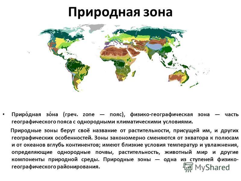 Природная изона Приро́дная изо́на (греч. zone пояс), физико-географическая изона часть географического пояса с однородными климатическими условиями. Природные изоны берут своё название от растительности, присущей им, и других географических особеннос