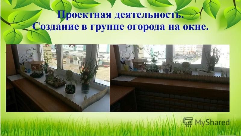 Проектная деятельность. Создание в группе огорода на окне.